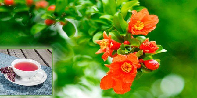 Nar Çiçeğinin Faydaları